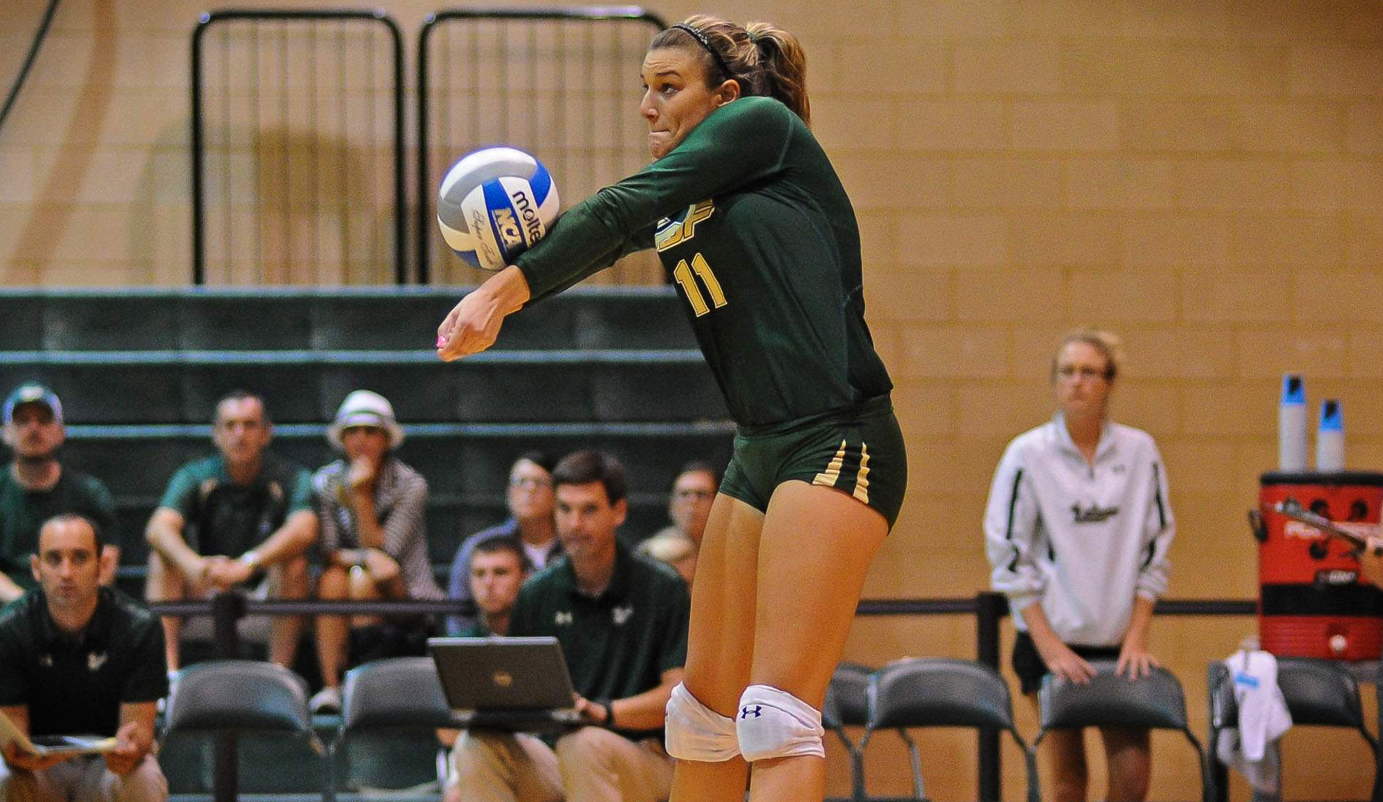 No. 11 Dakota Hampton USF Volleyball (2000x1160)