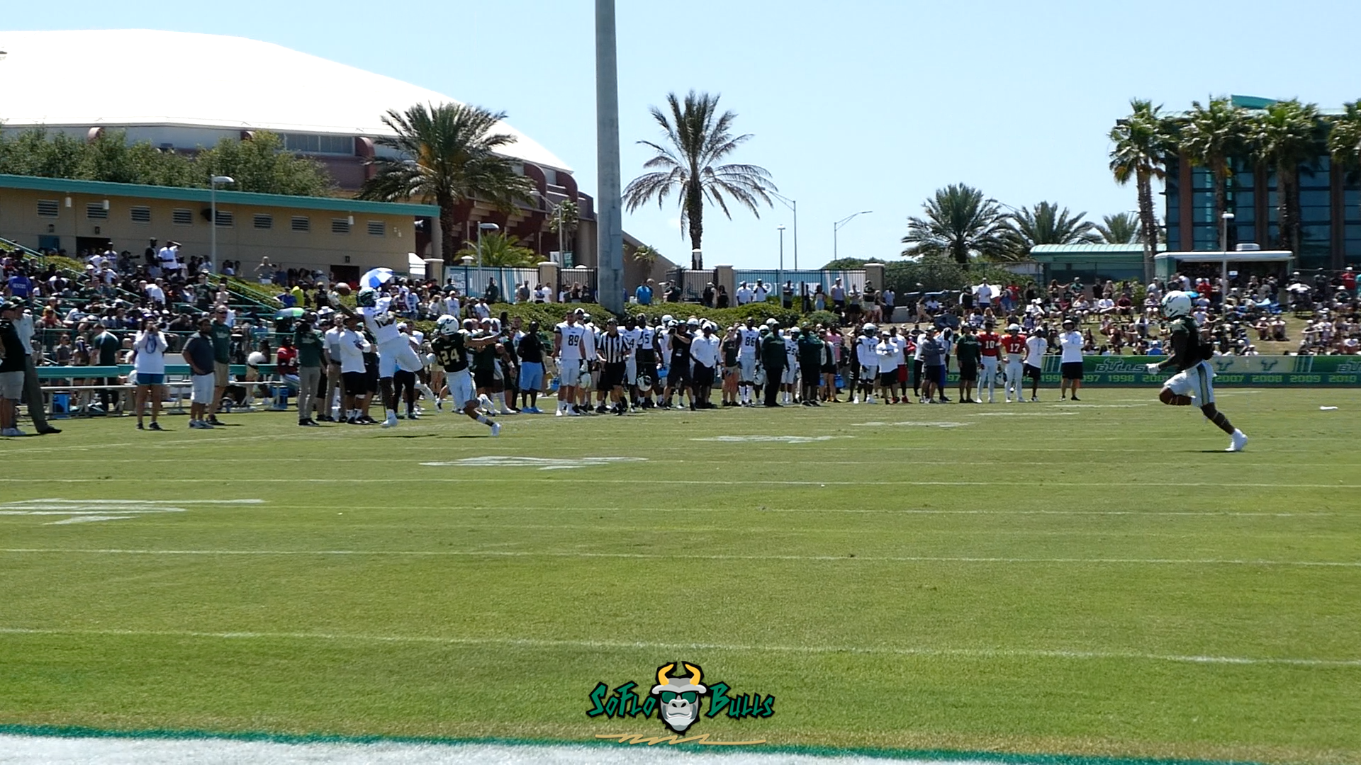 VIDEO: USF WR DeVontres Dukes Sick On-Handed Catch During the 2018 Spring Game by Matthew Manuri | SoFloBulls.com (1920x1080)